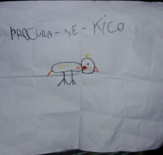 Menina de sete anos cria cartaz para auxiliar nas buscas por calopsita desaparecida em SP — Foto: Arquivo Pessoal