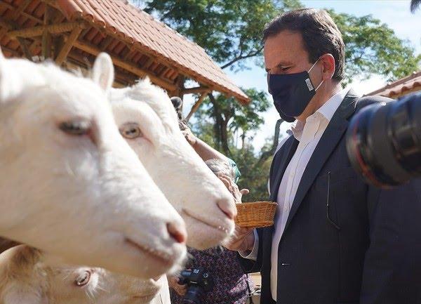 Paes conhece os 'moradores' do parque — Foto: Marcos Serra Lima/G1