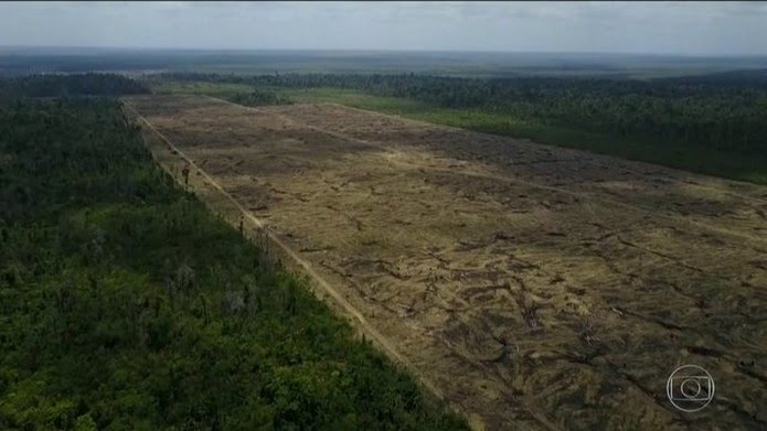 Alertas de desmatamento na Amazônia batem recorde para os meses de novembro, segundo o Inpe. — Foto: Reprodução/JN
