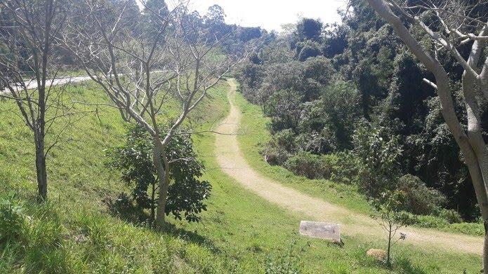Jovem que desapareceu em Alumínio (SP) pode ter passado por trilha em área de mata — Foto: Jomar Bellini/TV Tem